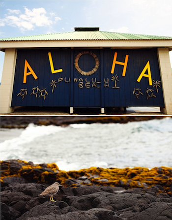 Aloha and welcome to Punaluu!