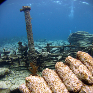 Explore Shipwrecks in the Bermuda Triangle