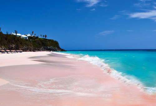The Allure of Bermuda's Pink Sandy Beaches is Irresistible